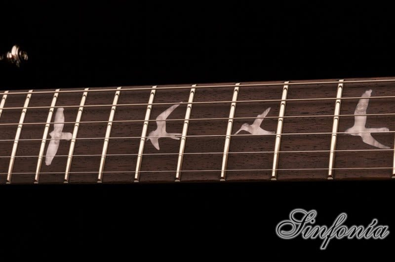 guitarra electrica se chris robertson mastil