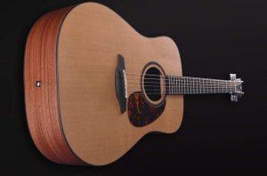 guitarra acustica indigo deluxe cy mastil