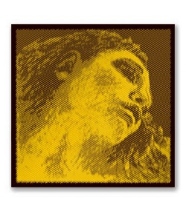 CUERDA EVAH PIRAZZI 4   ORO
